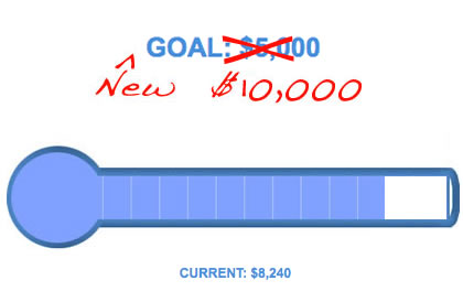 Goal-O-Meter example 2